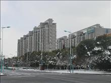 百桥花园实景图(6)