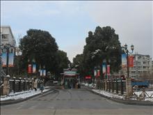 南湖苑实景图(2)