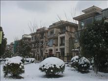 南湖苑实景图(1)