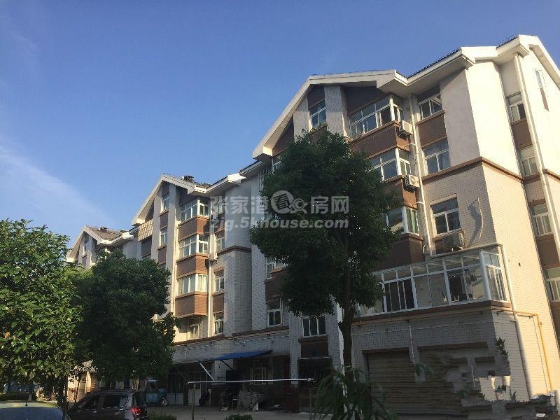 黄泗浦小区